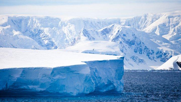 STUDIU: Topirea gheţii din Antarctica s-a accelerat de şase ori în ultimele patru decenii