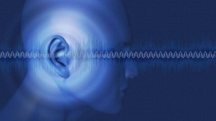 Cercetătorii au aflat un aspect esenţial care face urechea sensibilă chiar şi la vibraţiile la scară subatomică