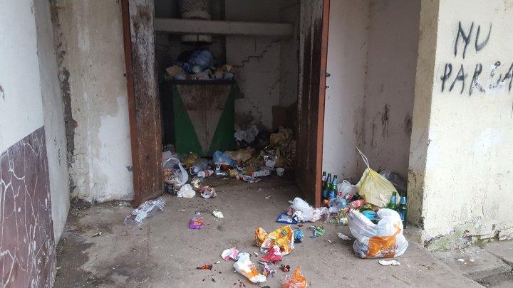 DEZASTRU TOTAL! Povestea oamenilor dintr-un bloc din Capitală care trăiesc cu gunoiul sub fereastră (FOTO)