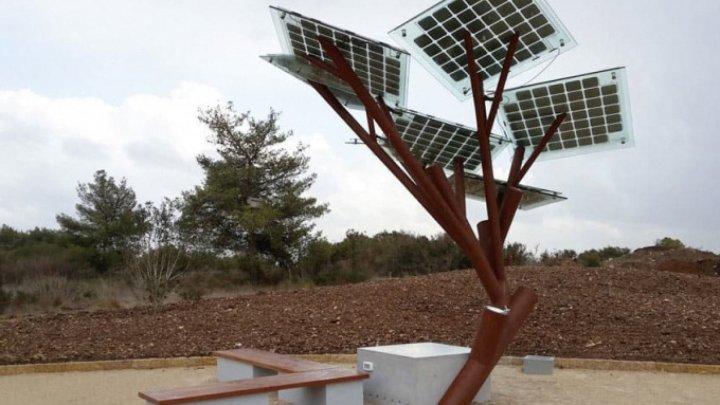 Doi arbori solari vor fi instalaţi pe strada Pietonală şi pe bulevardul Mircea cel Bătrân din Capitală