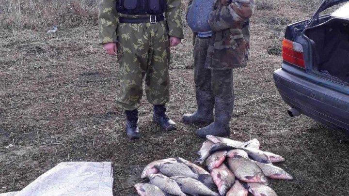 Mai mulţi bărbaţi, prinsi în timp ce pescuiau ilegal pe lacul Beleu (FOTO)