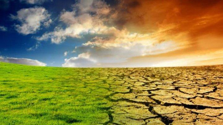 STUDIU: Obiectivele de limitare a încălzirii globale au mici şanse să fie atinse