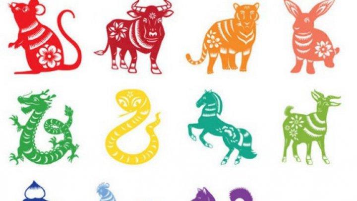 Horoscop chinezesc: 4 zodii vor avea cea mai grea lună