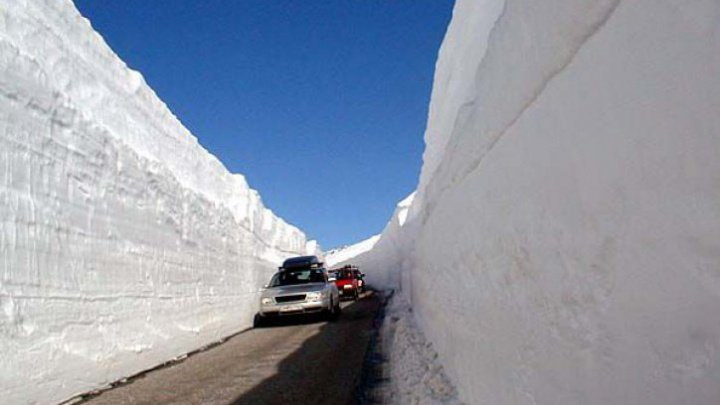RAPORT: Temperaturile din insulele arctice ar putea creşte cu 10 grade Celsius până în anul 2100