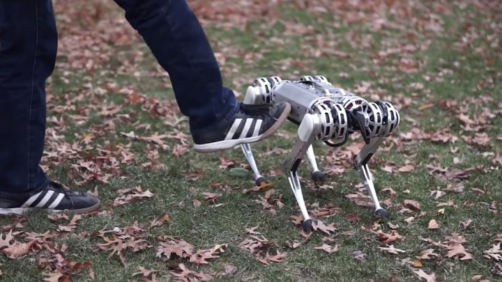 Un câine robot a ÎNVĂŢAT să facă piruete. Cum arată Mini Cheetah
