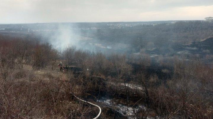 Flăcările au cuprins Moldova! În 24 de ore, pompierii au intervenit în peste 100 de cazuri de stingere a incendiilor (FOTO)
