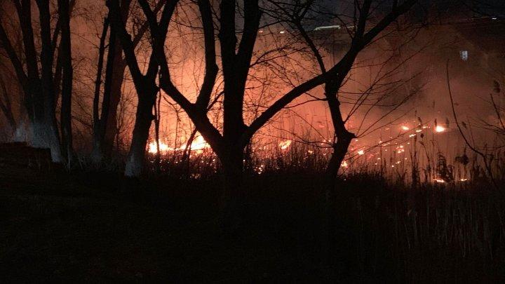 Incendiu de vegetație pe strada Albișoara din Capitală. Arde un teren