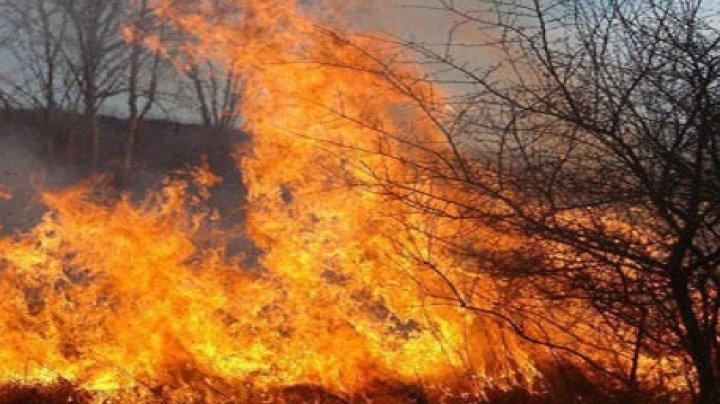 INCENDIU DEVASTATOR la Cahul. Flăcările erau într-o periculoasă apropiere de o benzinărie