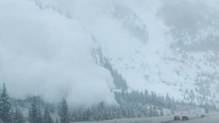 Două persoane MOARTE într-o avalanşă în Marea Britanie. Altele două au fost rănite