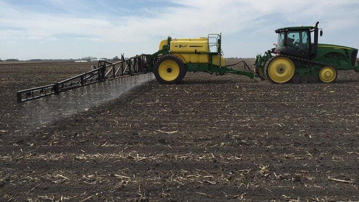 Fermierii au ieşit la muncă în câmp. În acest an, vor fi semănate 20 de mii de hectare de sfeclă de zahăr