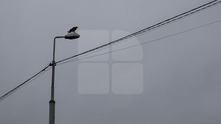 Vântul face prăpăd în Moldova. Mai multe localități din trei raioane au rămas fără lumină