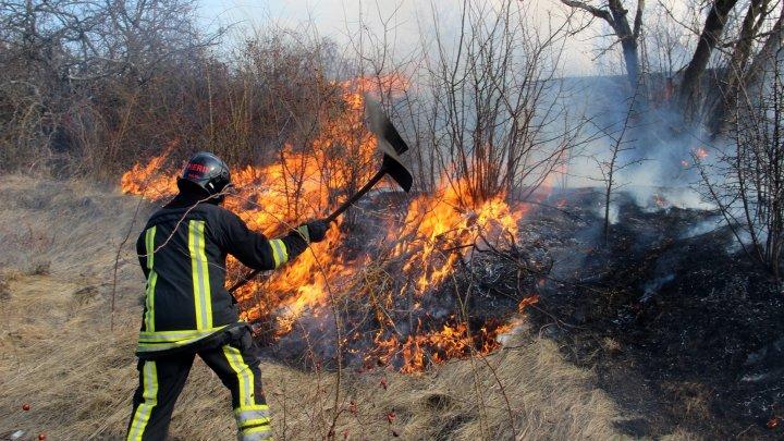 Moldova, cuprinsă de FLĂCĂRI. Incendiile de vegetaţie au pus pe jar pompierii din întreaga ţară