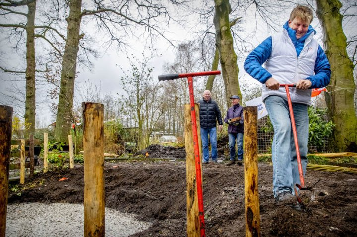 Regele Olandei a celebrat Ziua Naţională a Voluntariatului printr-o acţiune de CURĂŢENIE într-o grădină zoologică