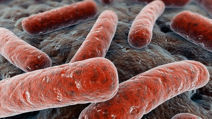 STUDIU: Tuberculoza rămâne o provocare majoră de sănătate în Asia Centrală şi Europa