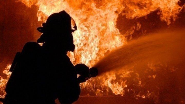 Incendiu în Capitală. Un service auto ilegal a ars până în temelie (VIDEO)