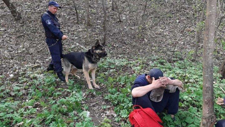 Un bărbat din Soroca, reținut de patrupedul Rex. Cum a fost găsit (FOTO)
