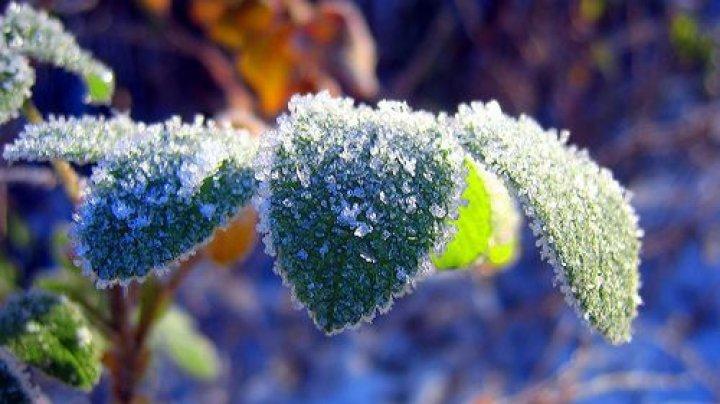 Temperaturile au coborît noaptea trecută pană la -7 grade Celsius. Meteorologii anunţă un nou Cod Galben de îngheţ