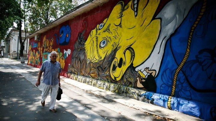 Picturile murale din Chicago vor fi înregistrate ca lucrări de artă pentru a nu fi şterse din greşeală