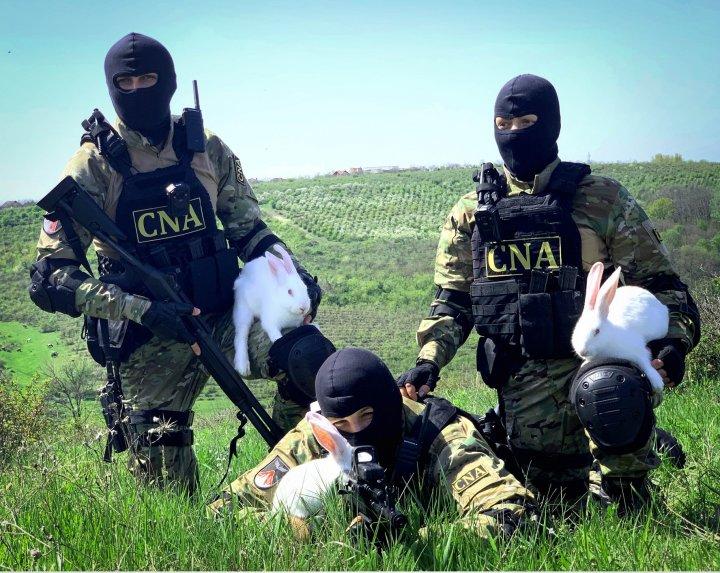 Ofiţerii CNA aşa CUM NU I-AI MAI VĂZUT: Sub mască, toţi suntem oameni (IMAGINI CARE TE LASĂ FĂRĂ CUVINTE)