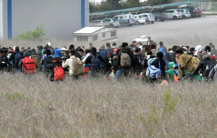 Ciocniri VIOLENTE la graniţa Bulgariei cu Grecia. 3 MII DE MILITARI se opun valului de imigranţi ce vor să traverseze ILEGAL (FOTO)