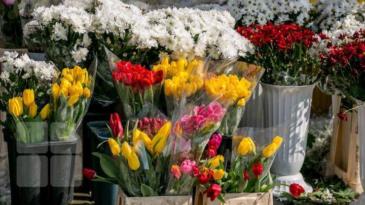 Vânzătorii de flori, vizitaţi de inspectorii fiscali. Ce s-a întâmplat aseară la piaţa angro din Capitală (FOTO)