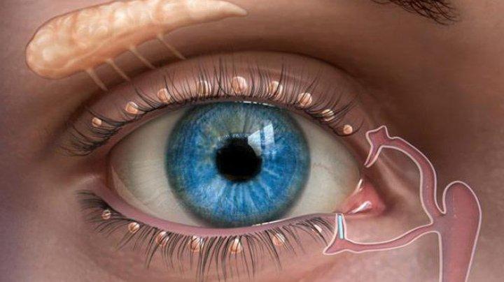 CAZ MEDICAL UNIC. Cum unei femei i-au descoperit în glandele lacrimale un CUIB DE ALBINE