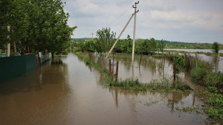 PLOILE ABUNDENTE FAC RAVAGII. Râuri ieșite din albii și zeci de gospodării inundate