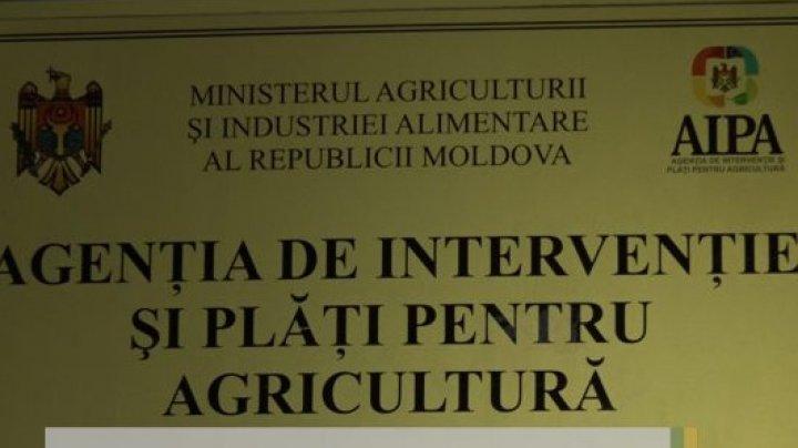 O nouă conducere la Agenția de Intervenție și Plăți pentru Agricultură