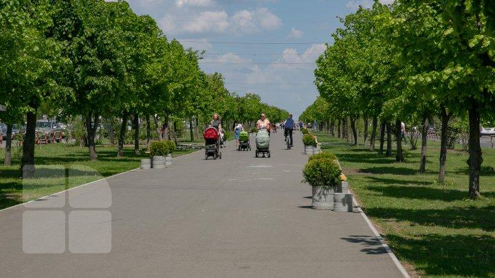 INEDIT! Pe bulevardul Mircea cel Bătrân din Capitală au fost instalate BĂNCI 3D (FOTOREPORT)