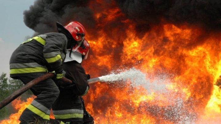 Peste 400 de pompieri mobilizați în Grecia. Un incendiu face ravagii de câteva zile pe Insula Evia