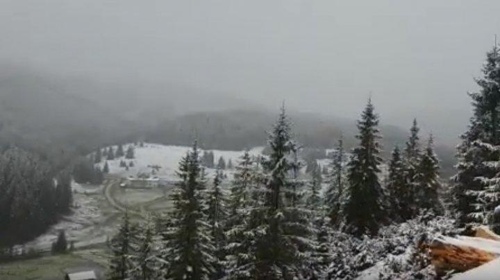 Peisaj glaciar în România. Cum arată zonele montane, acoperite de un strat gros de zăpadă (VIDEO)