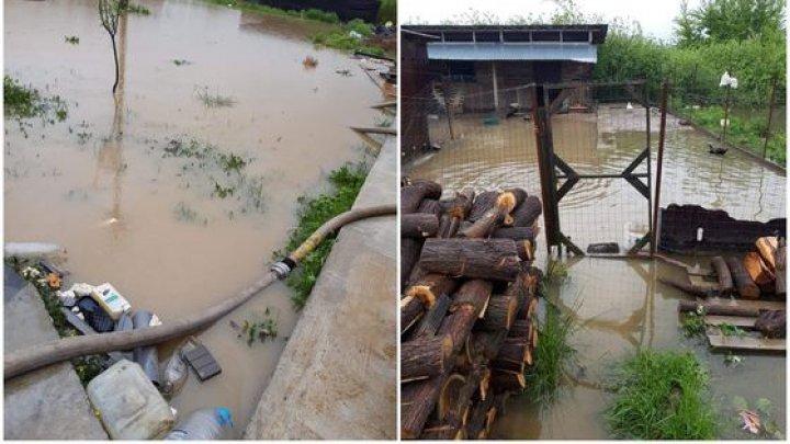 Cod roşu de inundaţii în Timiş şi Caraş Severin, România. Şuvoaiele au cuprins mai multe proprietăţi