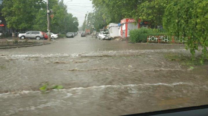 PLOAIA a făcut PRĂPĂD în Capitală: Străzi şi subsoluri inundate, crengi şi fire electrice rupte
