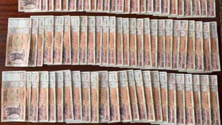 Schemă frauduloasă. SUTE DE MII DE LEI, dobândiți ILEGAL de conducerea Întreprinderii de Stat pentru Silvicultură