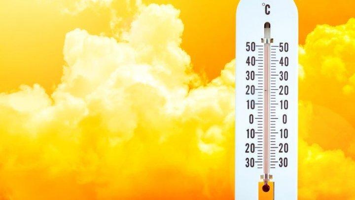 Vine CANICULA în Moldova. Câte grade vor indica termometrele în acest weekend