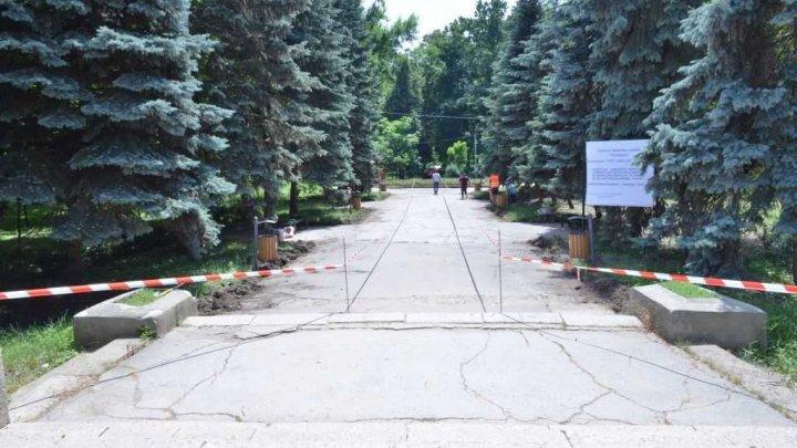 Startul lucrărilor de reconstrucție a Parcului Alunelul, sectorul Buiucani (FOTO)