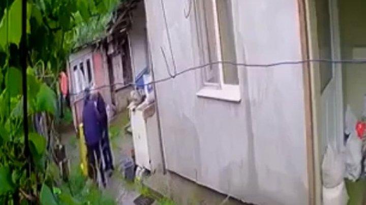 IMAGINI CU PUTERNIC IMPACT EMOŢIONAL! Un cățeluș a fost ucis cu toporul de vecini (VIDEO)