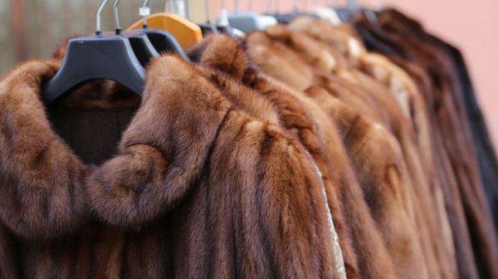 Prada, celebra casă de modă de lux, renunţă la blănuri. Care este motivul