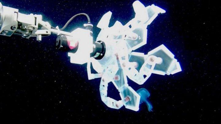 Bine de ştiut! De ce e folosită o mână robotică pentru studierea oceanelor