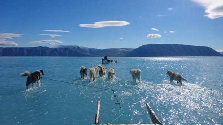 FOTOGRAFIA care arată cum s-a topit 40% din gheaţa care acoperă Groenlanda, într-o singură zi, VIRALĂ
