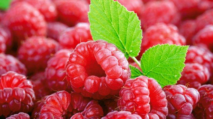 Cum să păstrezi fructele şi legumele proaspete mai mult timp