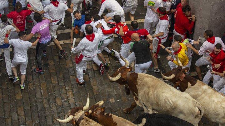 Încă şase persoane rănite în ultima zi a curselor cu tauri din Pamplona
