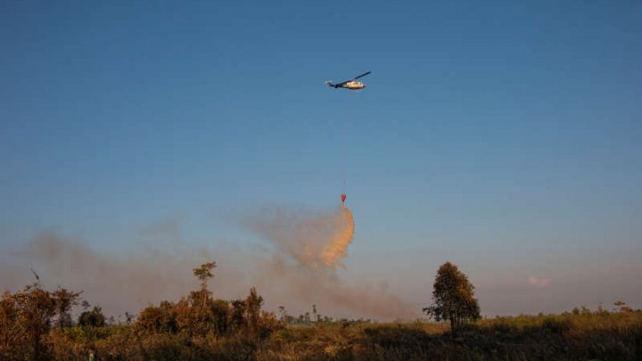 Mii de militari şi poliţişti, organizați pentru combaterea incendiilor de pădure din Indonezia