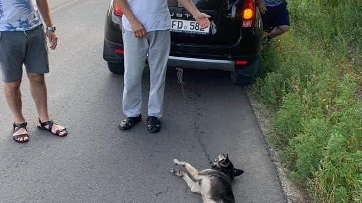 CRUZIME FĂRĂ MARGINI! Preotul Ghenadie Văluță a legat un câine de mașină și l-a târât pe asfalt (FOTO)
