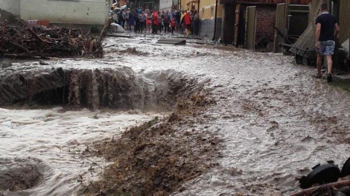 Vremea a făcut din nou ravagii în România. Animale moarte și mașini distruse, în județul Sibiu