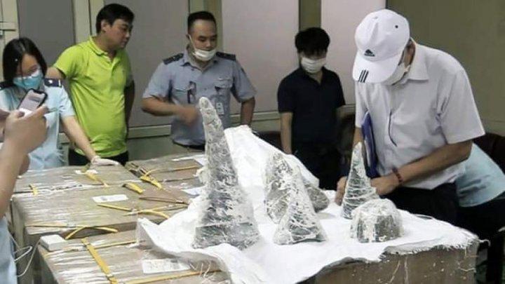 Peste 125 de kilograme de coarne de rinocer au fost capturate în Vietnam