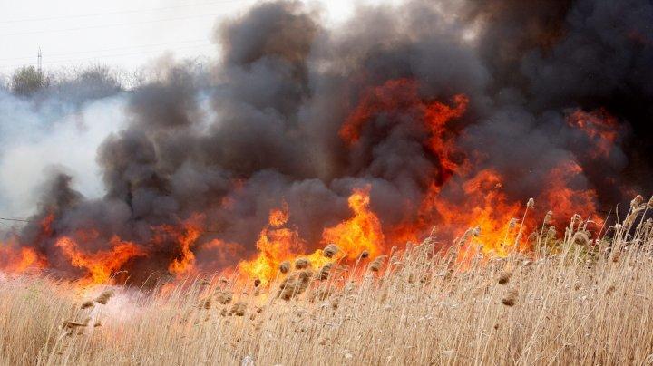ATENŢIE, dacă plecaţi în Grecia. Risc ridicat de incendii de vegetaţie pentru insula Rhodos