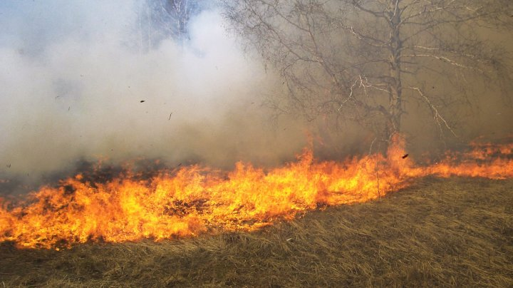 Incendiu de vegetaţie pe Insula Maui din Hawaii. Mii de locuitori şi turişti au fost evacuați