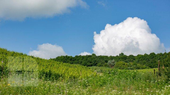 METEO 6 august 2019: Vreme frumoasă şi cer variabil în toată ţara