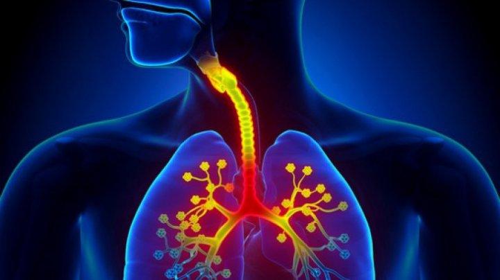 Amestecul natural din trei PLANTE care îţi curăţă plămânii